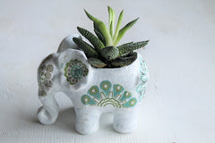 Ceramic/Mixed media Elephant Succulent Planter