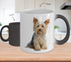 Yorkshire Terrier Color Changing Mugs & Coffee Cups - Yorkshire Terrier Coffee Mugs - TeeAmazing
