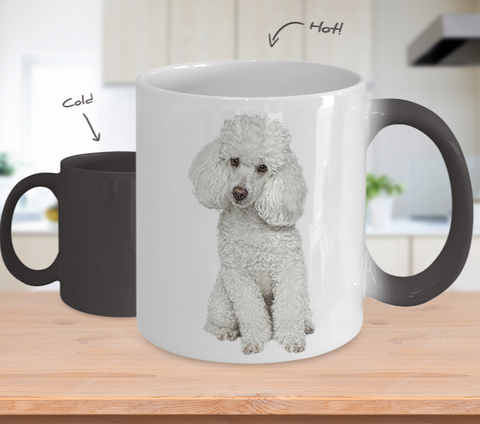 Poodle Color Changing Mugs & Coffee Cups - Poodle Coffee Mugs - TeeAmazing