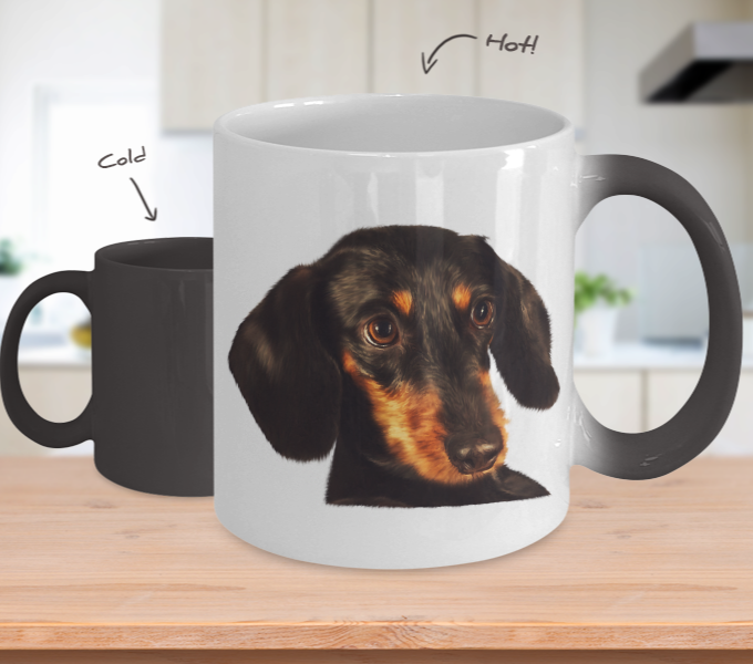 Dachshund Dog Color Changing Mugs & Coffee Cups - Dachshund Coffee Mugs - TeeAmazing