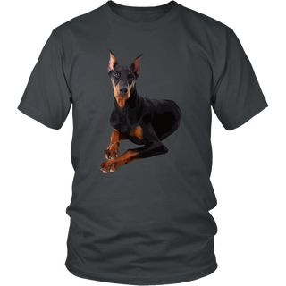 Doberman Pinscher Dog T Shirts, Tees & Hoodies - Doberman Pinscher Shirts - TeeAmazing