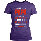 Papa Way Too Cool Grandfather T-Shirt - Papa Shirt - TeeAmazing