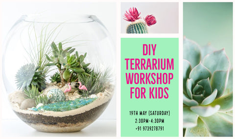 Terrarium Workshop For Kids
