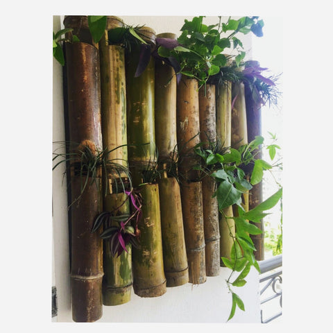 Rustic Bamboo Wall Planter