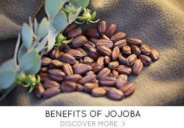 Benefits of Jojoba