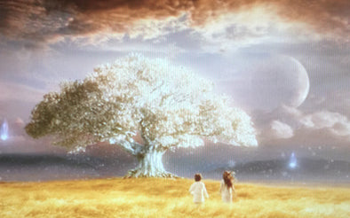 What Is the Meaning Of Tree Of Life