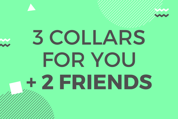 3 Collars for 3 Friends ❤︎