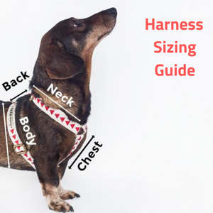 Albuquerque Dog Harness - The Bark Co. Handmade dog Harness
