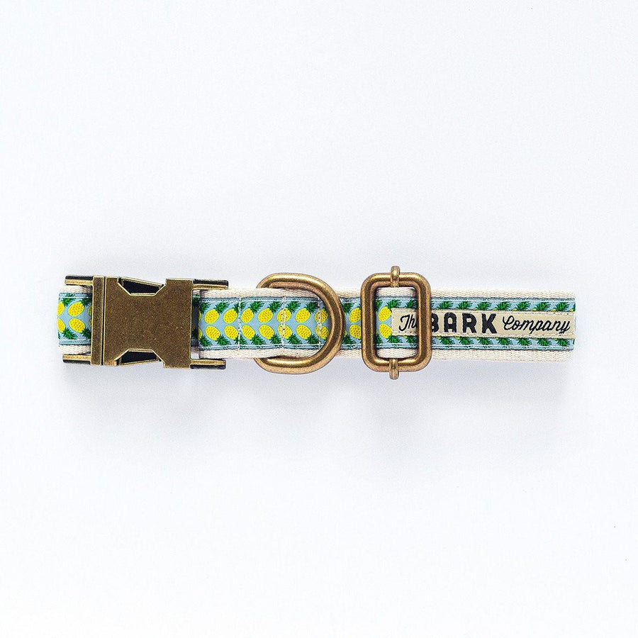 Pineapple dog collar - The Bark Co. Handmade dog Collar