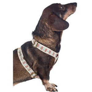 Agave dog harness - The Bark Co. Handmade dog Harness