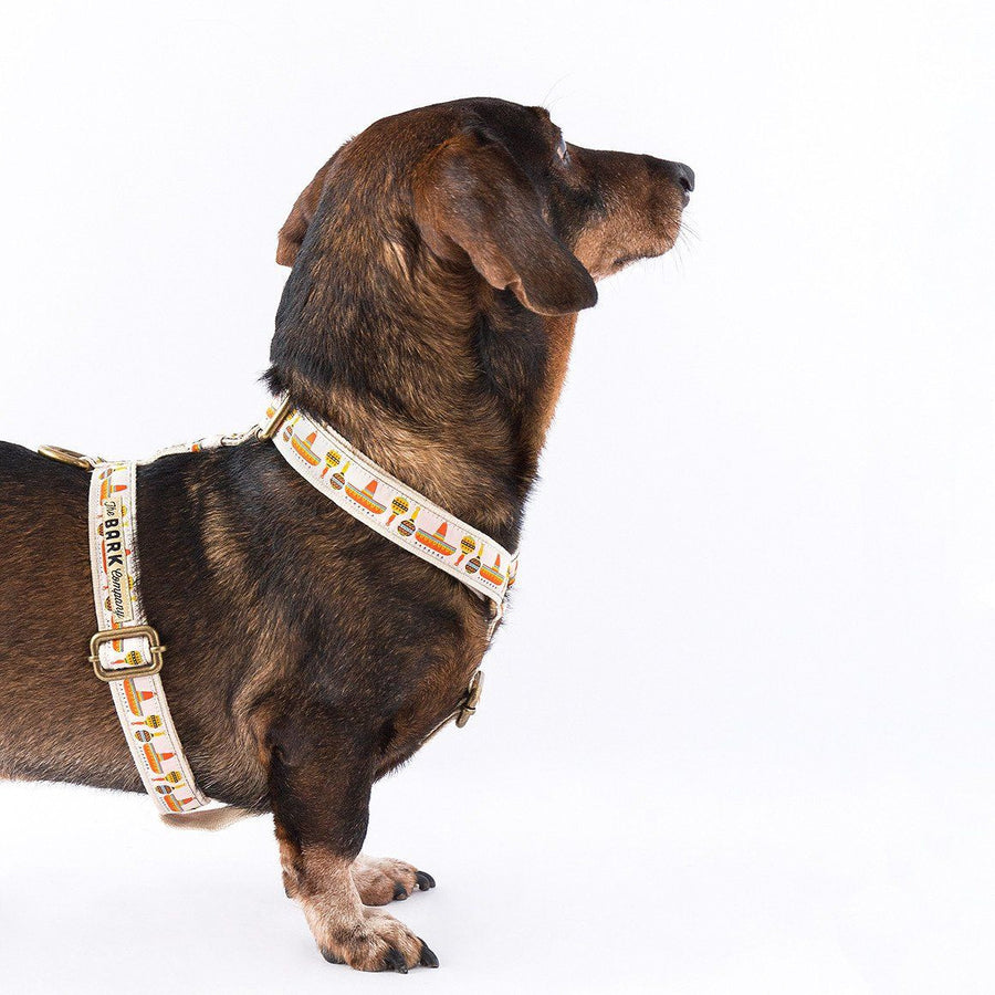 Mexico dog harness - The Bark Co. Handmade dog Harness
