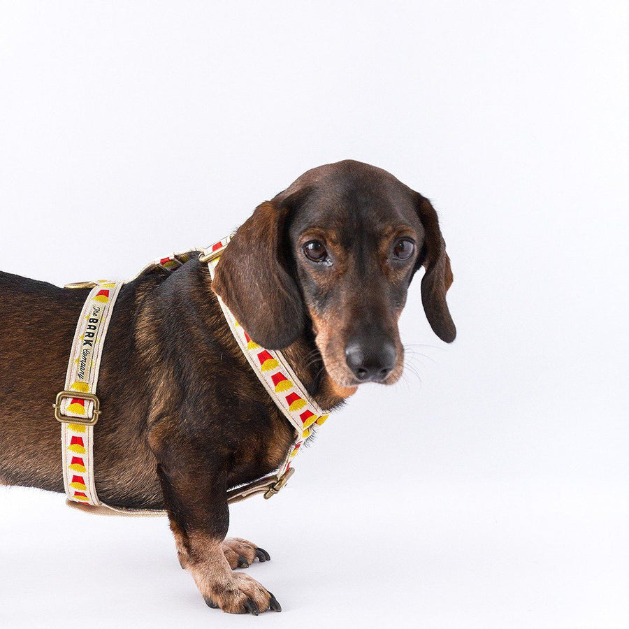 Fries dog harness - The Bark Co. Handmade dog Harness