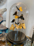 Butterfly Globe  –  Golden Butterflies Globe – Glass Globe – Stunning Butterfly Ornament Black Gold