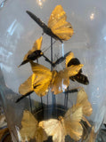 Glass Dome –  Golden Butterflies Globe – Stunning Butterfly Ornament