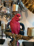 Parrot Candlestick – Candle Holder Parrot Pink