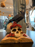 Black Raven on Skull  –  Gothic Fantasy  –  Edgar Allan Poe