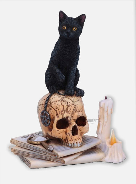 Black Cat on Skull – Spirits of Salem