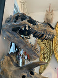 Large Dinosaur Head Skull Wall Decor –  T Rex – Tyrannosaurus Head