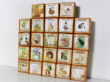 Peter Rabbit Wooden Baby Name Blocks – Beatrix Potter's Story Blocks –  A to Z Beatrix Potter Alphabet
