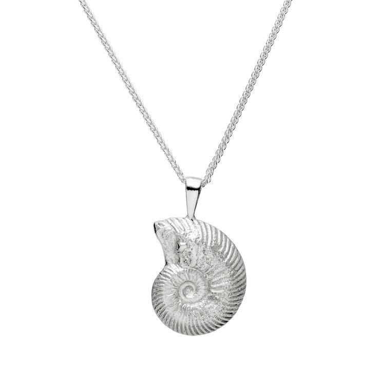 Wild and Fine (Jessica Hickman-Woolcott) Large Silver Ammonite pendant 30x18mm