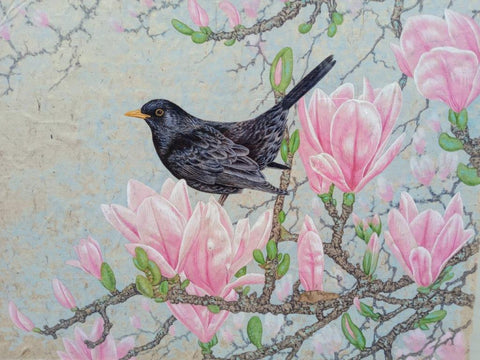 Gary Woodley 'Blackbird on Magnolia' 69x79cm Gouache on Indian grass paper