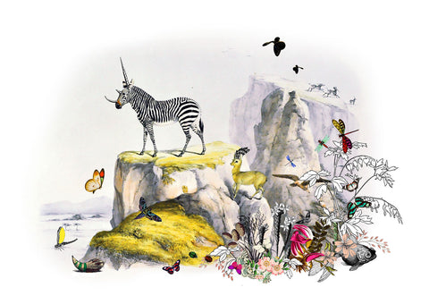 Kristjana S Williams 'Zebra Gardur' archival giclée print edition 30x42cm