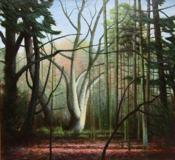 Louis McNally 'Light in the Woods' oil on panel 36x38cm