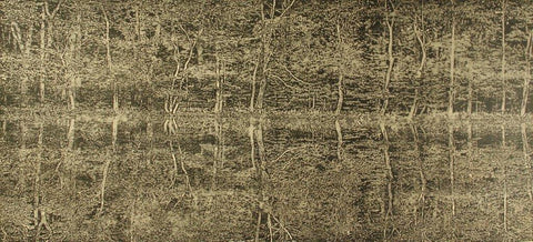 Trevor Price 'A Moment of Reflection I' drypoint and engraved relief print 47x102cm