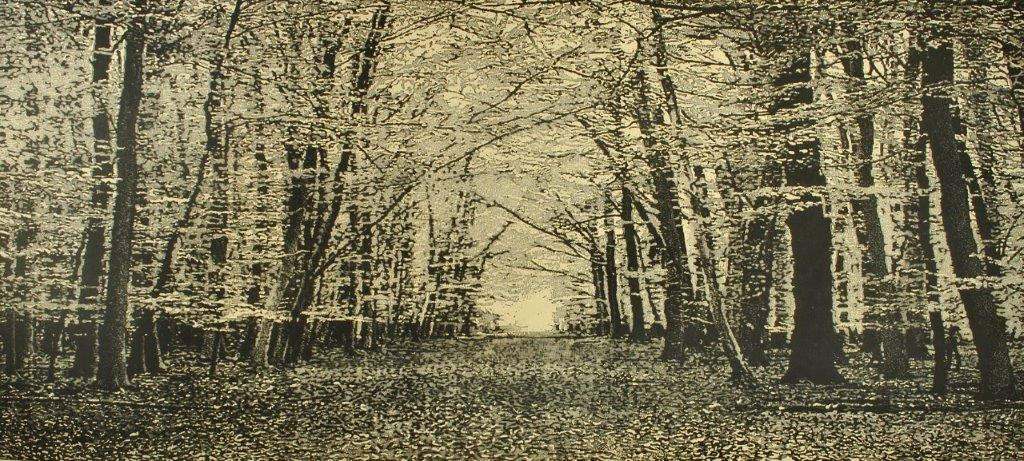 Trevor Price 'The Beech Wood II'  drypoint and engraved relief print 48x102cm