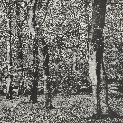 Trevor Price 'Woodland III' drypoint and engraved relief print - paper and image size 35.5x35.5cm