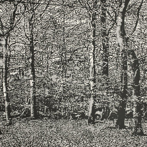 Trevor Price 'Woodland II' drypoint and engraved relief print- paper and image size 35.5x35.5cm