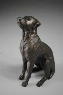 bronze resing sculpture of a dog with raised head by April Young at Iona House Gallery