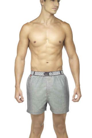 Zoiro Denin 4104 Premium Cotton Plain Boxer-Grey