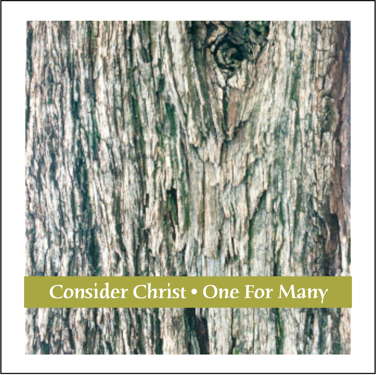 Consider Christ | One For Many (Song Book)