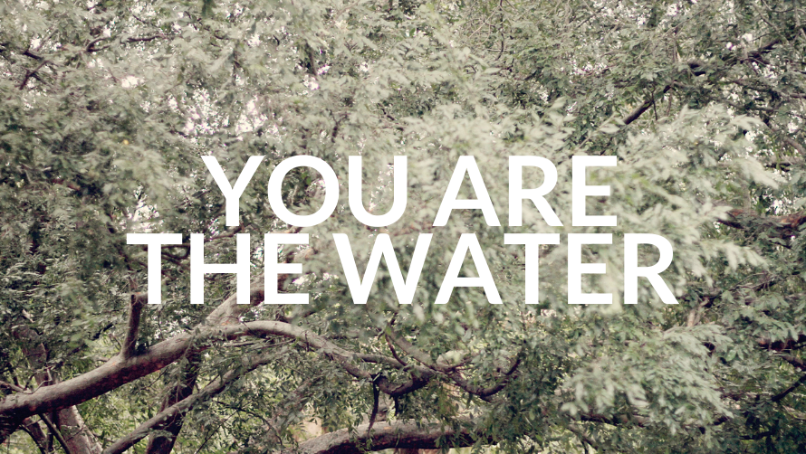 You Are The Water