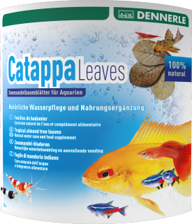Dennerle Catappa Almond Leaves