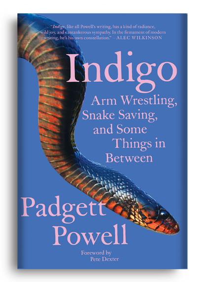 Indigo: Armwrestling, Snake Saving, and Some Things In Between by Padgett Powell