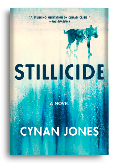 Stillicide by Cynan Jones
