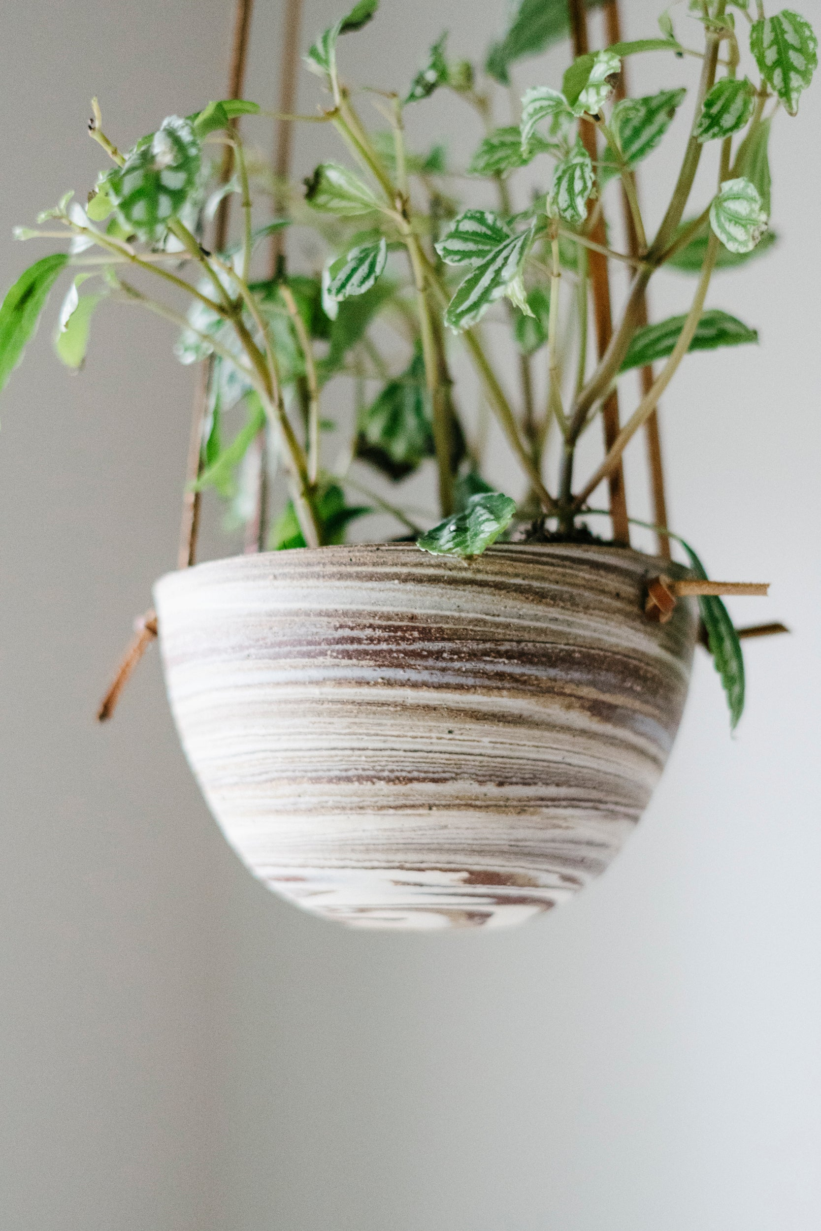 medium knot planter - brown + marbled