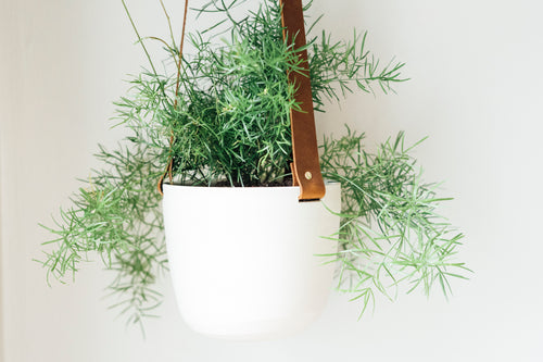 large basics planter - brown + white