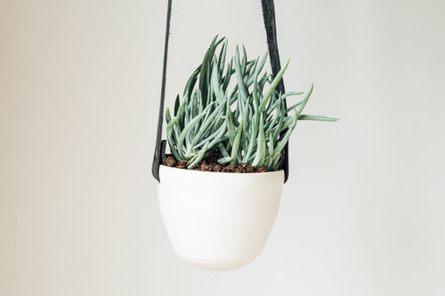 small basics planter - black + white