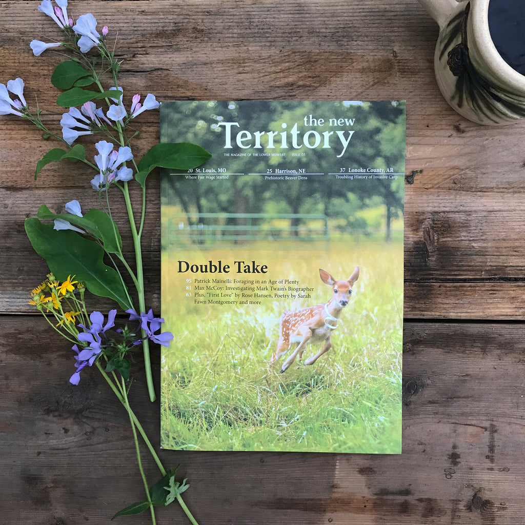 "The New Territory Magazine - Issue 03 "" Double Take"""