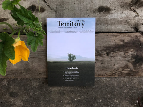 "The New Territory  - Issue 06 ""Hinterlands"""