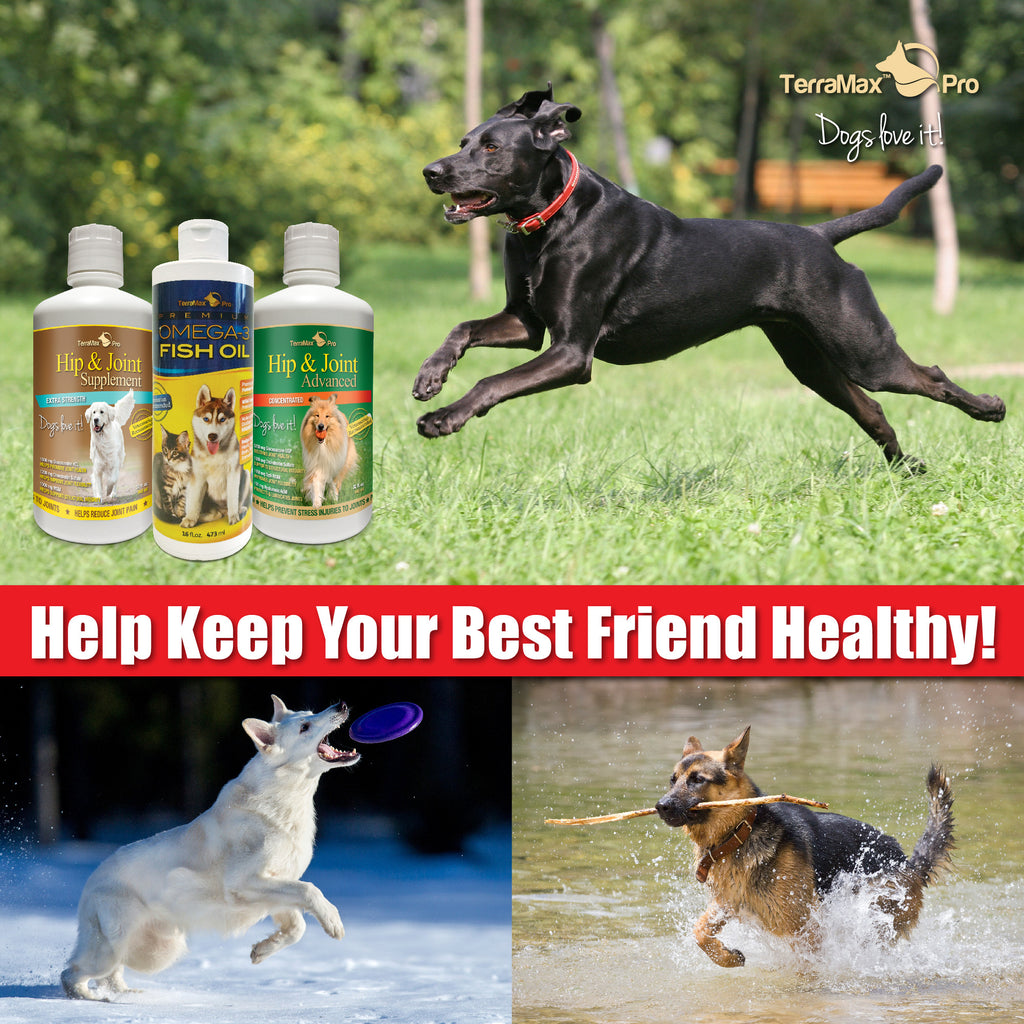Hip & Joint Advanced for Dogs