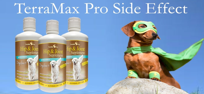 Hip & Joint Supplement for Dogs - Liquid Glucosamine