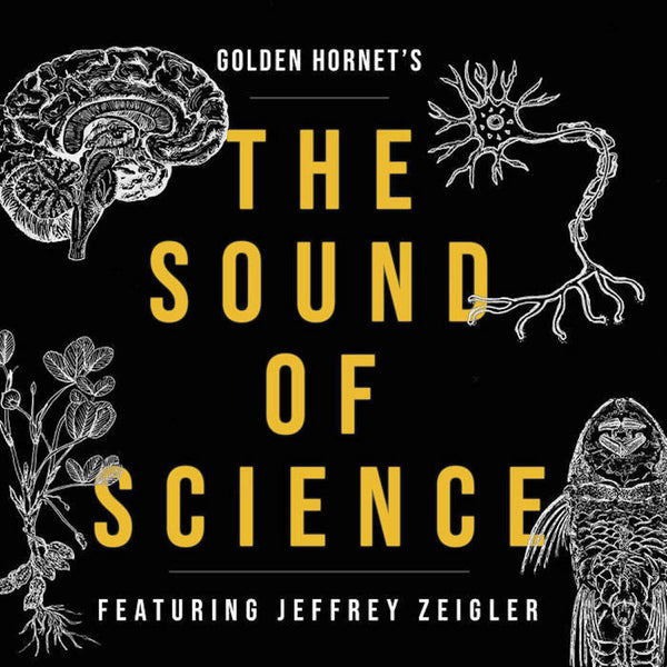 Golden Hornet - The Sound of Science