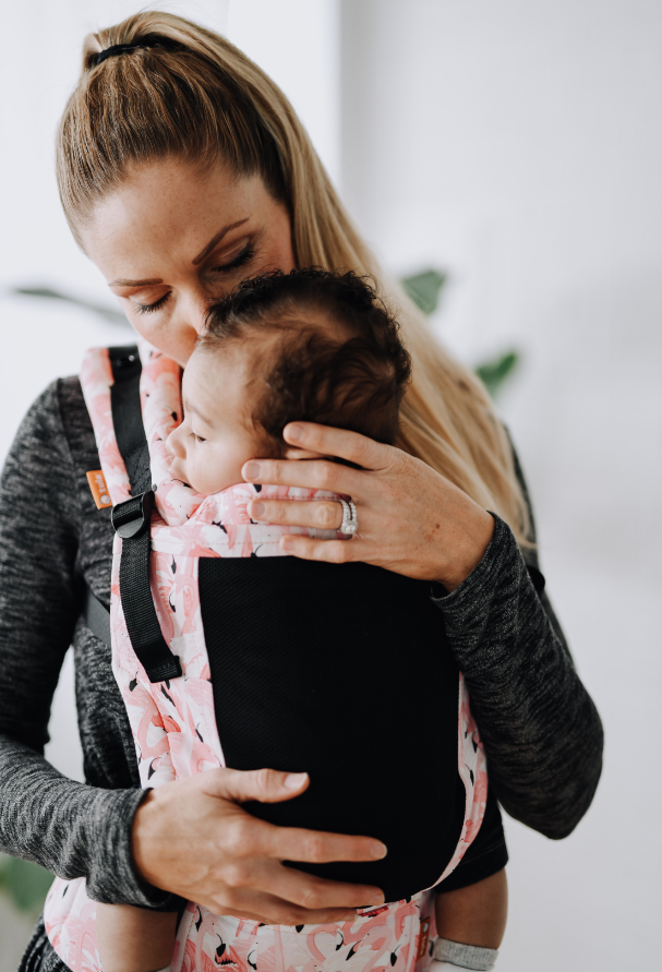Tula Baby Carrier FTG (Free to Grow)- Balancing act Coast