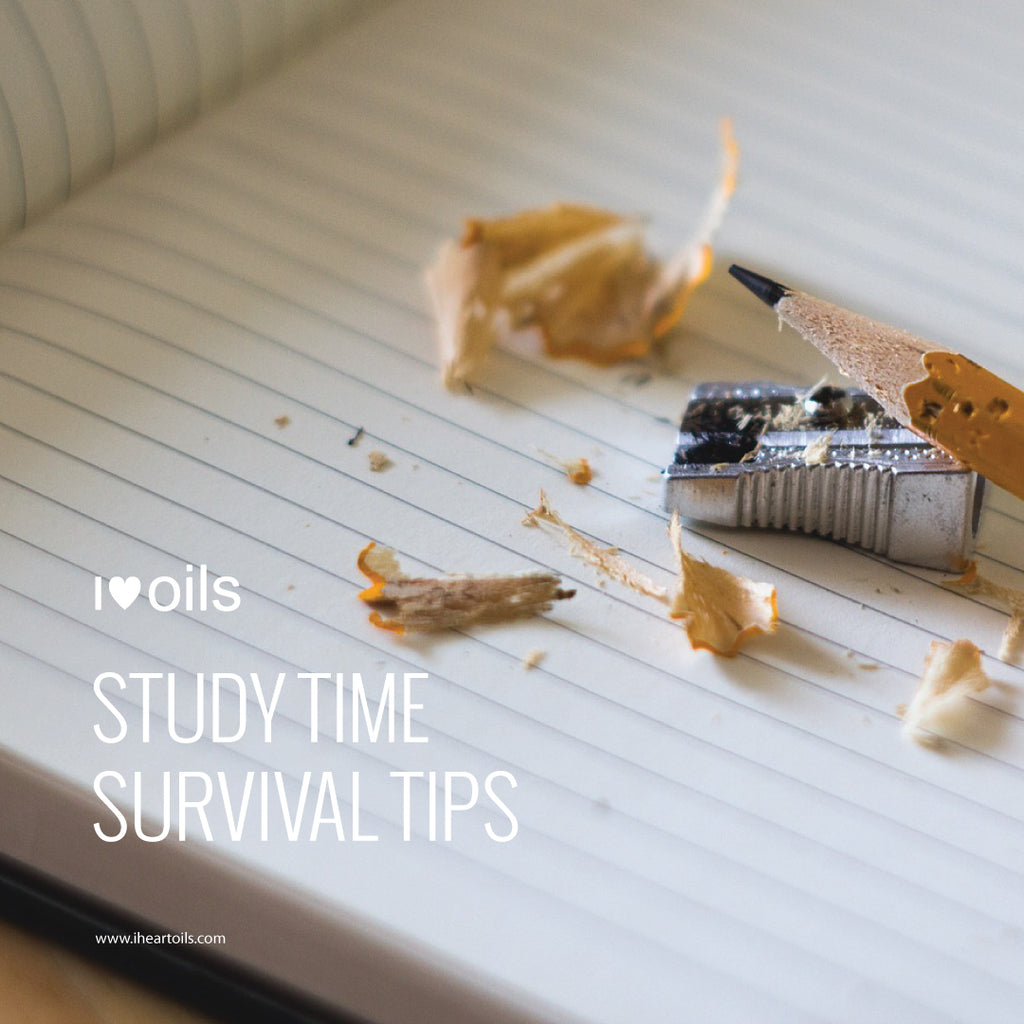I Heart Oils Study Time Survival Tips