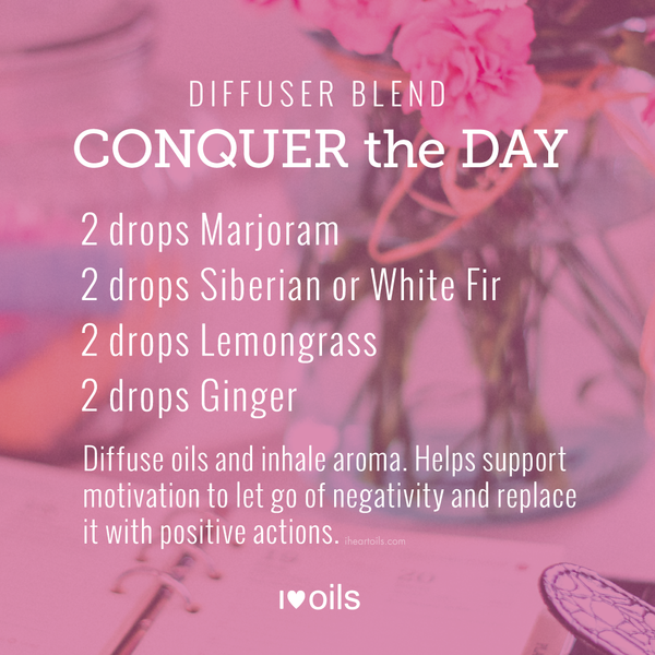 I Heart Oils Conquer the Day Diffuser Blend Essential Oil