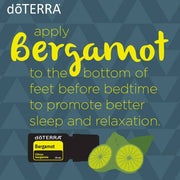 Bergamot Essential Oil | Citrus bergamia